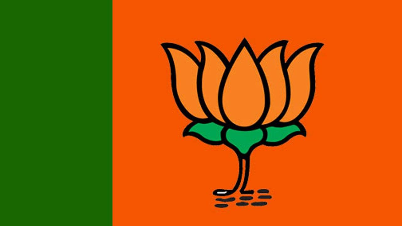 """""""ભારત કે મન કી બાત મોદી કે સાથ"""" થીમ પર ભાજપના 26 ચૂંટણી રથ આજથી ગુજરાતના ગામેગામ ઘૂંમશે"""