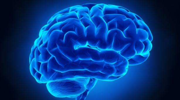 ઈન્ટરનેટનો વધુ ઉપયોગ મગજ માટે નુકસાનકારક, સ્મરણશક્તિ અને એકગ્રતામાં ઉણપનું કારણ : રિપોર્ટ