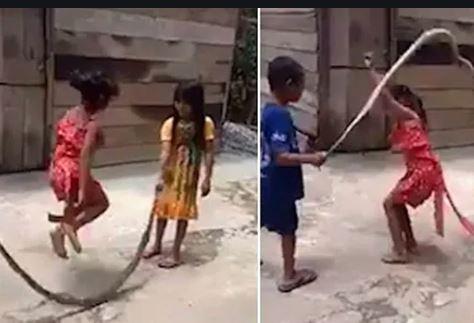VIRAL VIDEO- મરેલા સાંપને દોરડુ બનાવી આ બાળકીઓ કુદી રહી છે દોરડા, જુઓ વીડિયો