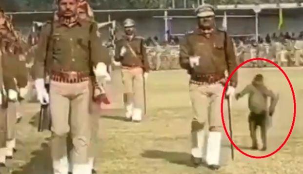 VIRAL VIDEO: આ શું? વાનરે પોલીસકર્મીને મારી જોરદાર લાત, જોઇને તમે પણ લોટપોટ થઇ જશો
