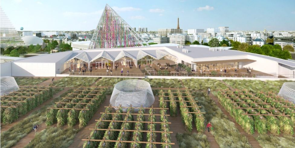Future Food: Paris shows the way with organic farming on rooftops