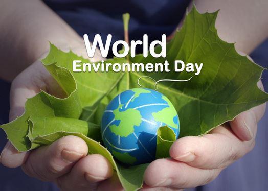 વિશ્વ પર્યાવરણ દિવસ 2020: વિશ્વ પર્યાવરણ દિવસ કેમ ઉજવવામાં આવે છે, જાણો ક્યારે અને કેવી રીતે શરૂઆત થઈ