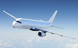 International Passenger Flights to Remain Suspended till November 30