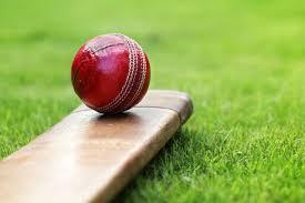કોમનવેલ્થ ગેમ્સ 2022 માં ક્રિકેટનો પણ સમાવેશ કરવામાં આવ્યો