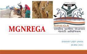 સંયૂક્ત રાષ્ટ્રની સલાહકારે લખેલા પુસ્તકમાં કહ્યું, 'નરેગા ભારતની મોટી સફળતા છે'