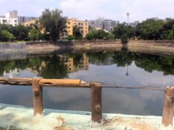 Garbage and dirt in the lakes of Ahmedabad
